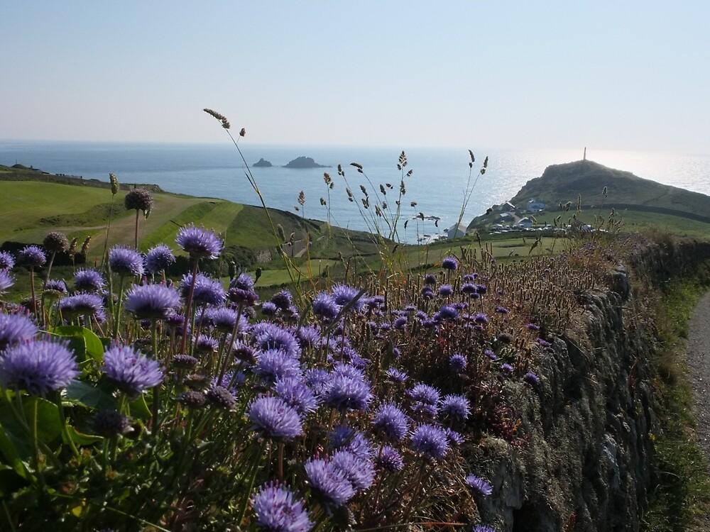 Cape Cornwall by woodlandninja