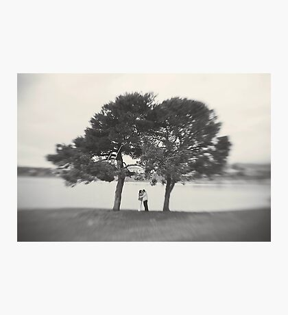 kiss under the tree Photographic Print