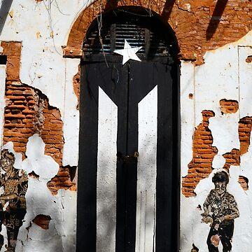 Puerto Rico flag,black & white by erozzz