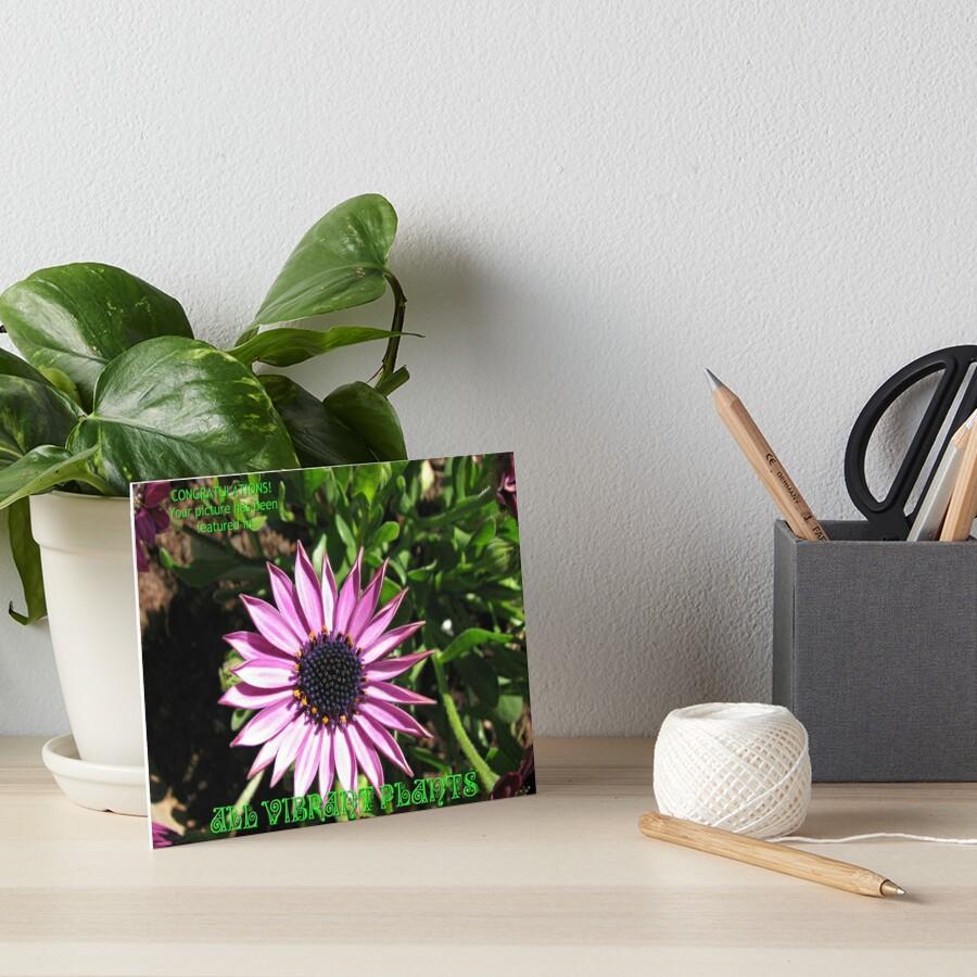 Alle Lebendigen Pflanzen - Feature Banner Galeriedruck