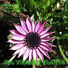 Alle Lebendigen Pflanzen - Feature Banner von BlueMoonRose