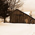 Old Run Down Shed by ericseyes