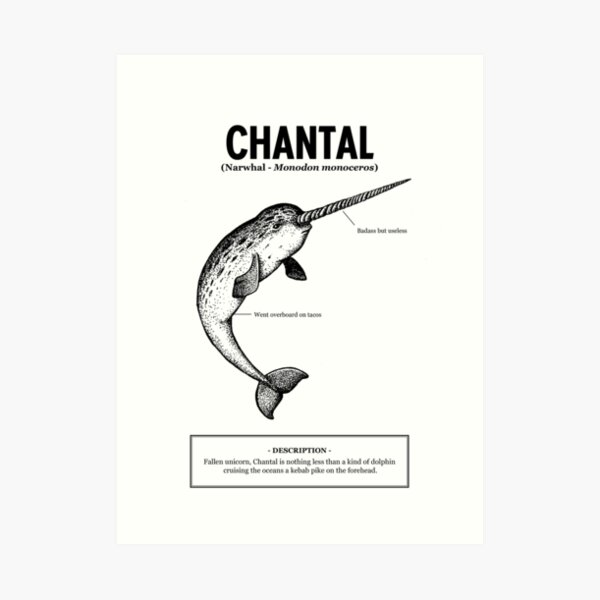 A narwhal named Chantal Impression artistique