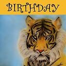 Happy Birthday - Tiger by Julie Thomas