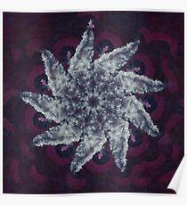 STP Screen Transfer Process - 0082 - Walls B Mandala Poster