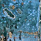 Weathered Paint by nadine henley