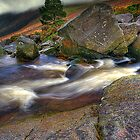 Rock Stream by Gerry Chaney