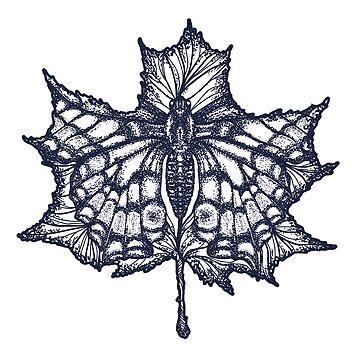 Mariposa de otoño de intueri