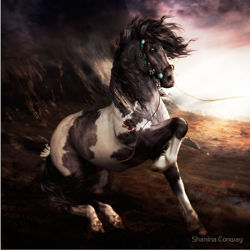 Quot Apache Blue Horse Quot By Shanina Conway Redbubble