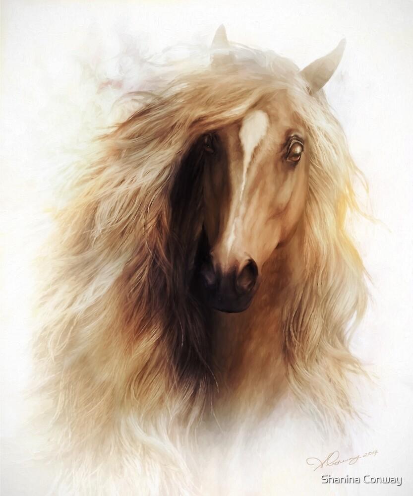 Sundance Horse Portrait by Shanina Conway