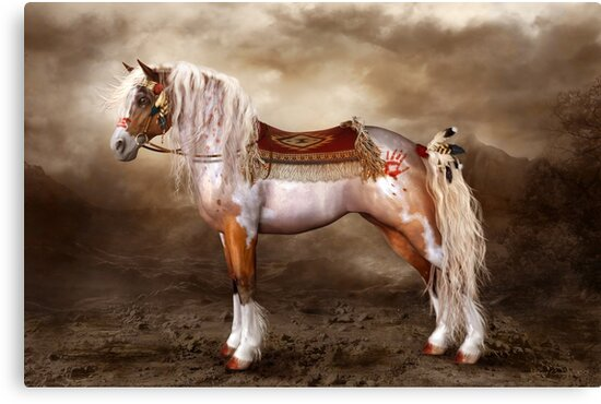 Cheveyo Native American Horse by Shanina Conway