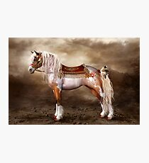 Cheveyo Native American Horse Photographic Print