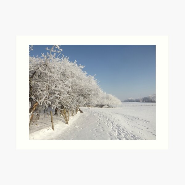 Snow on the river bank Art Print
