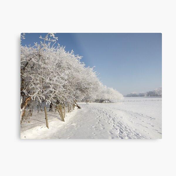 Snow on the river bank Metal Print
