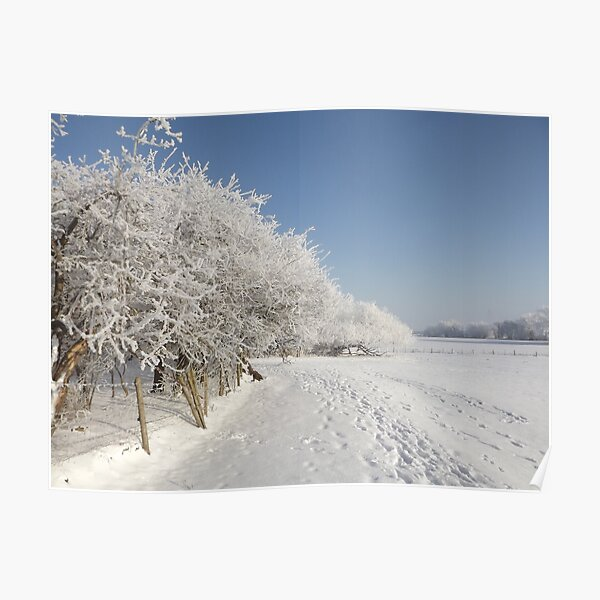Snow on the river bank Poster