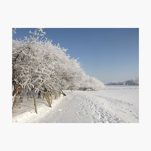 Snow on the river bank Photographic Print