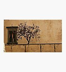 """Rooftop"" Photographic Print"