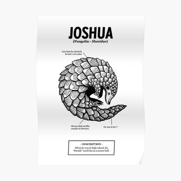 ses «amis» utilisaient Joshua comme ballon de foot. Poster
