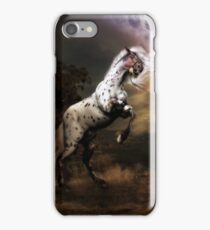 Difference of Opinion iPhone Case/Skin