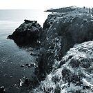cliffwalk by NordicBlackbird