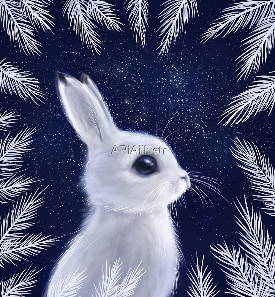 Winter Bunny by ARiAillustr