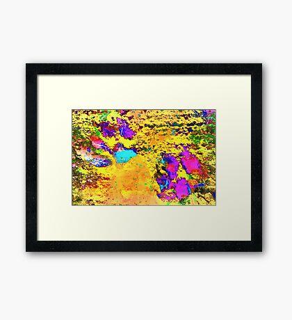 Paw Prints Desert Sands Framed Print