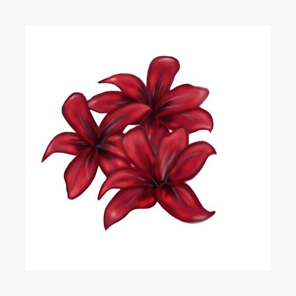 Rote Blüten / rote Blumen Fotodruck