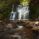 Tiger's Clough by Stephen Liptrot