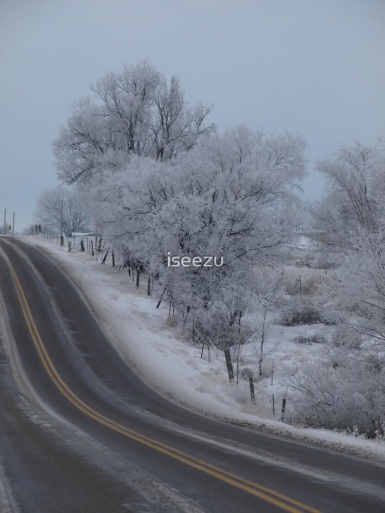 Frosty Idaho Road by iseezu