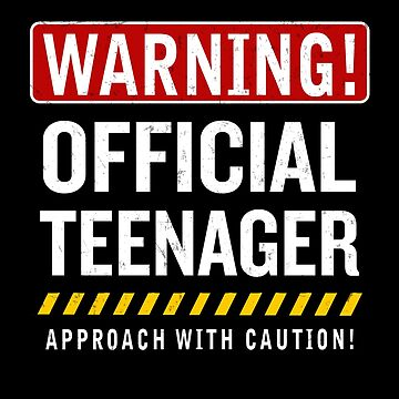 Official Teenager 13 Years Old Funny Teen 13th Birthday Gift by JapaneseInkArt