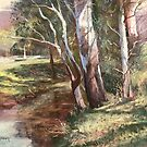 Peaceful Creek, Kangaroo Valley by Lynda Robinson