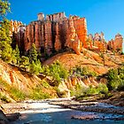 Red Canyon by Valentina Gatewood