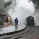 Puffing Billy - Waiting in the Rain. by Larry Lingard-Davis