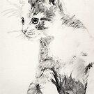 Kitten by whiterabbitart