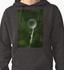 Budding .... Pullover Hoodie