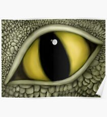 Dragon's Eye - Experiment - Original Poster