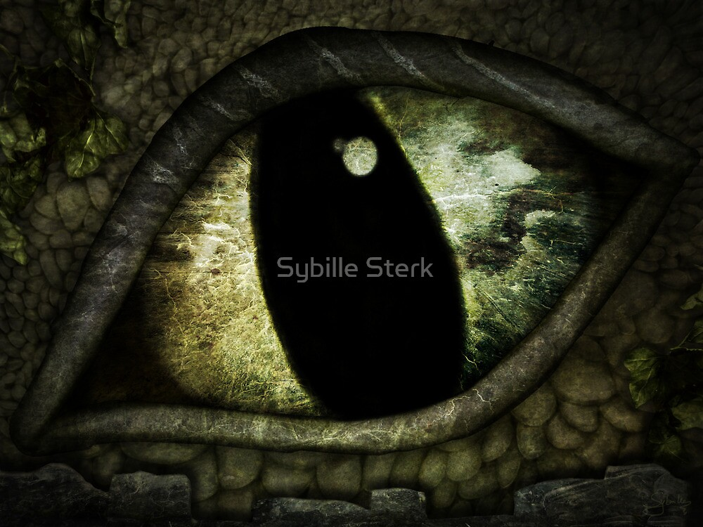Dragon's Eye - Experiment - Stone Dragon by Sybille Sterk