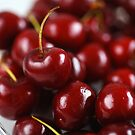 Summer Cherries by Joy Watson