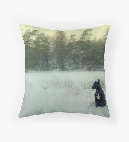 The Dog Daydreams... Throw Pillow