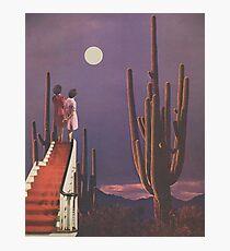Under Desert Skies Photographic Print