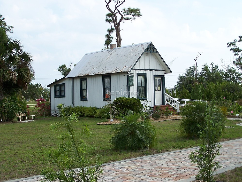 Florida Shotgun House by tapiona