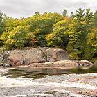 Rough and Sleek Currents - Mississagi River Autumn  by Georgia Mizuleva