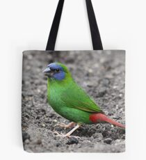 Blue-faced Parrot-finch Tote Bag