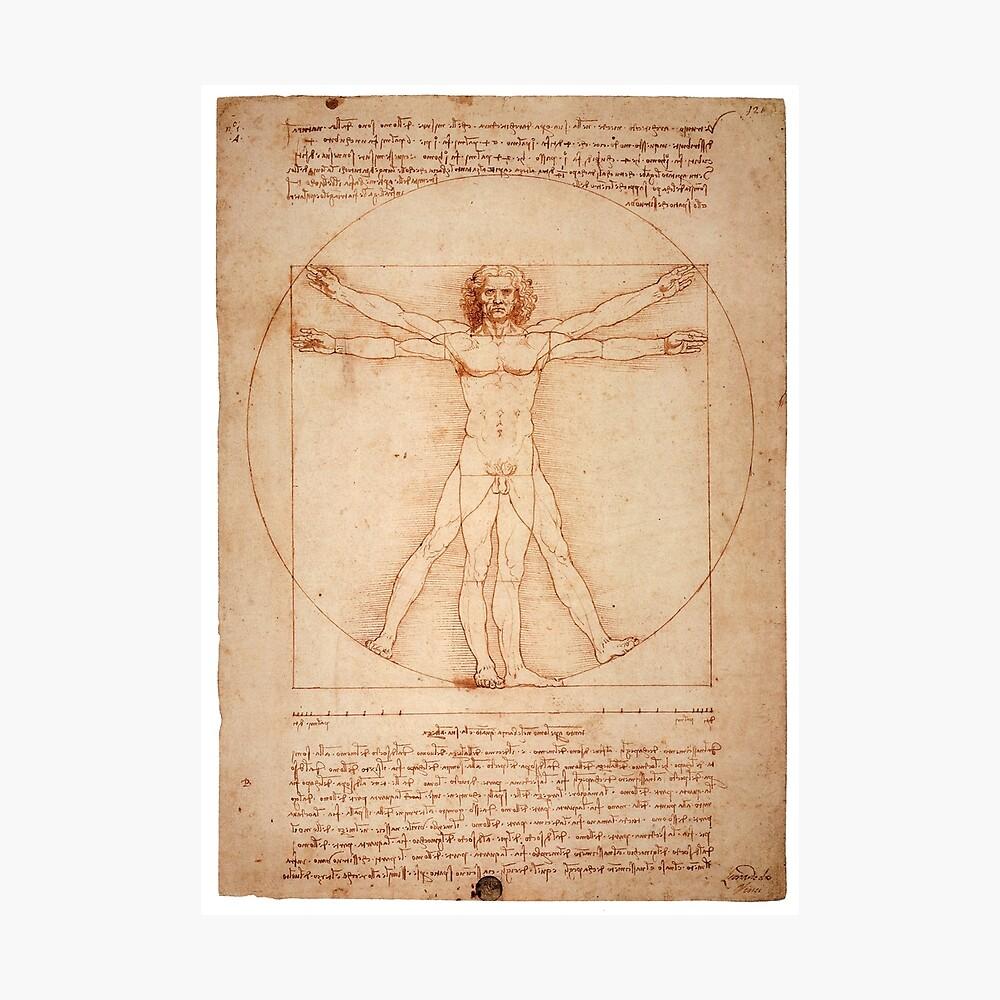 Vitruvian Man von Leonardo Da Vinci (1490) Fotodruck