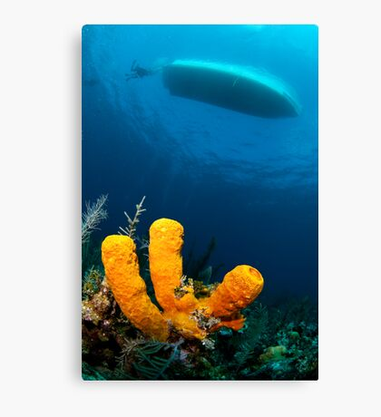 three sponge fingers and a boat Canvas Print