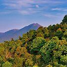 Lantau Island by Pascal Deckarm