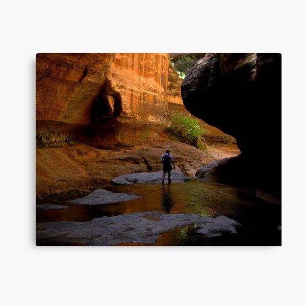 emergent hiker Canvas Print