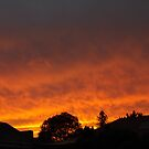 Sunset over Adelaide by Stefan Maguran