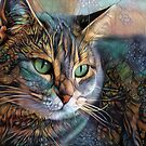 Psychedelic cat by EOSXTi