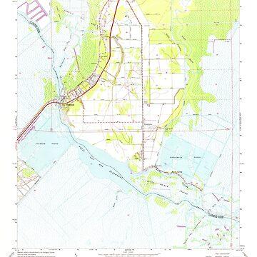 USGS TOPO Map Louisiana LA Des Allemands 331836 1967 24000 by wetdryvac